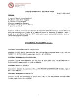 Comité de Competición nº 03
