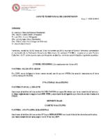 Comité de Competición nº 12