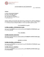 Comité de Competición nº 20