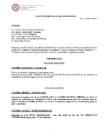 Comité de Competición nº 29