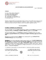 Comité de Competición nº 31