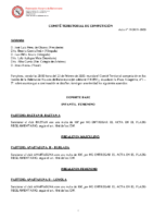 Comité de Competición nº 19